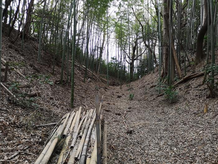 畝堀の可能性のある堀