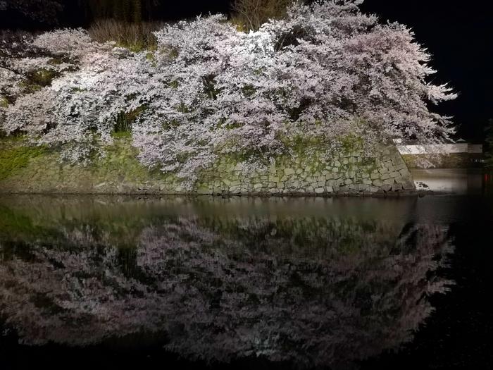 夜桜(その2)