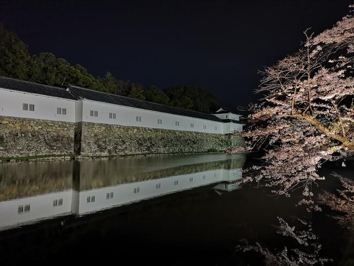 夜桜(その4)