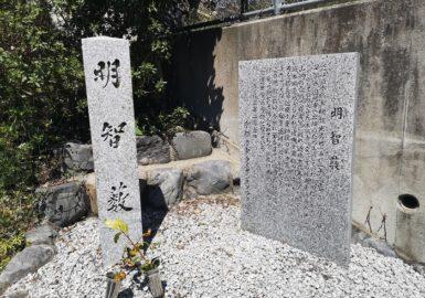 明智藪(アイキャッチ画像)