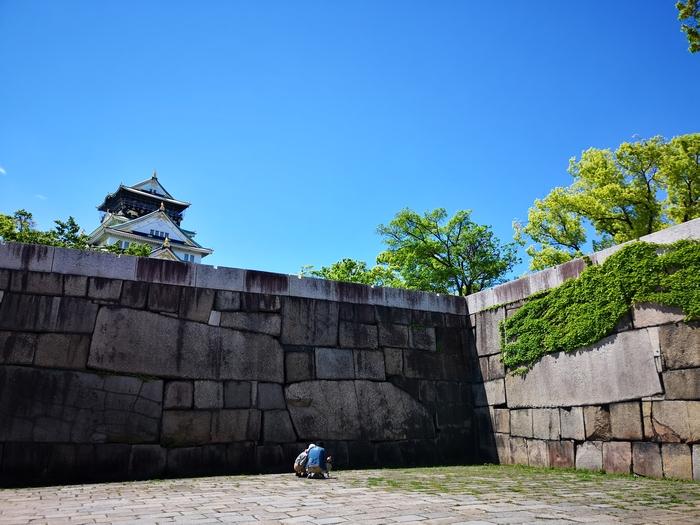 大阪城(アイキャッチ画像)