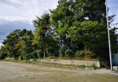 北野中学校の御土居