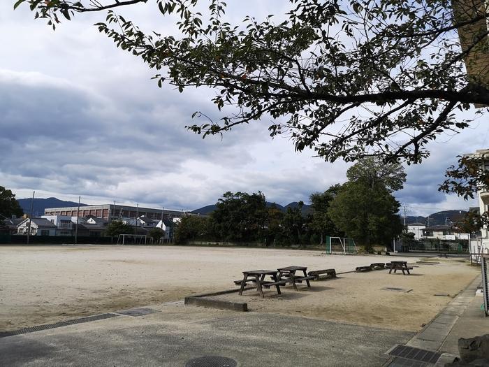 北野中学校の校庭の片隅にある御土居