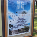 ウィズコロナ時代の小田原城訪問