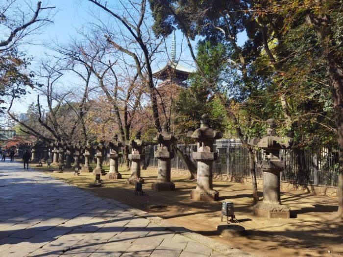 参道沿いの石灯籠